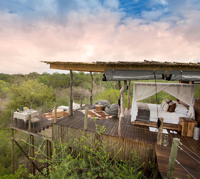 Treehouse tour to South Africa